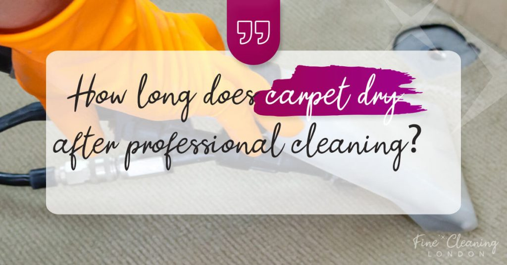 banner how long does it take carpets to dry after carpet cleaning