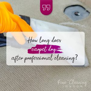 image how long does carpet take to dry after professional cleaning