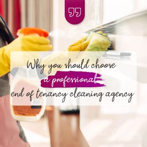 image professional cleaning london