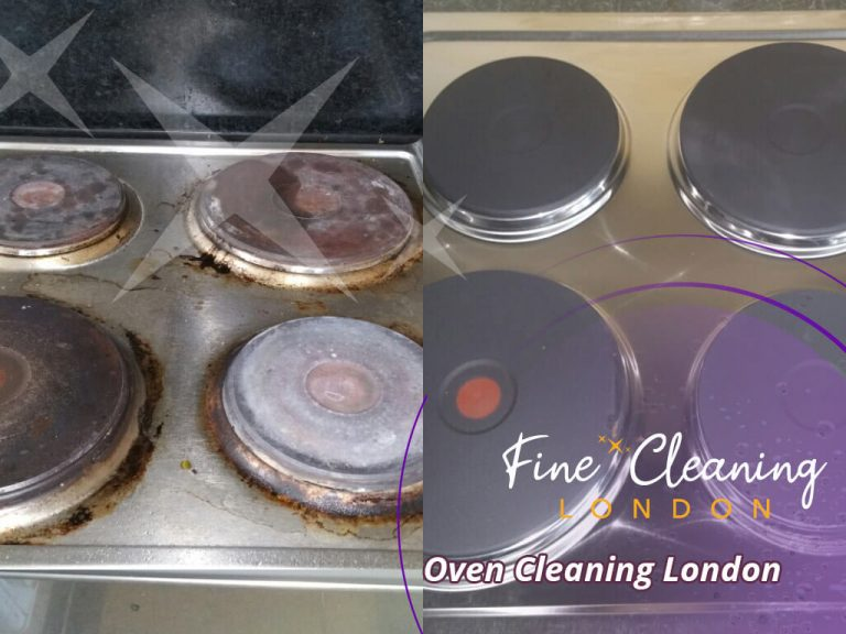 image of oven professional clean