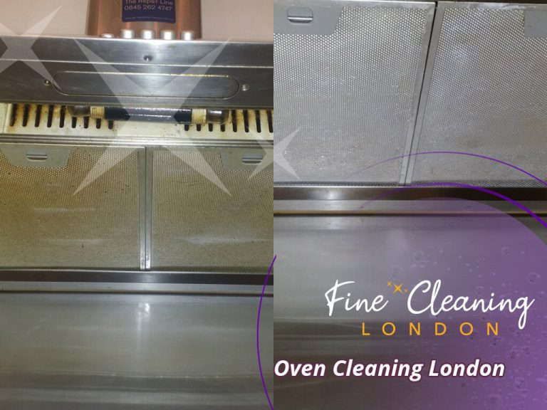 image of oven professional cleaning